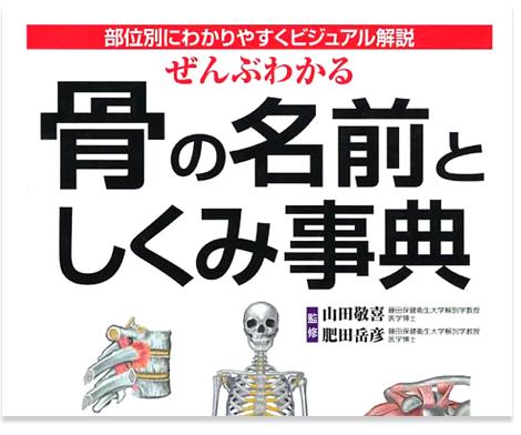 わかりやすい図譜と説明でまとめたコンパクトな「骨の図鑑」